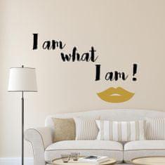 Crearreda dekorativna stenska nalepka I am what I am, L deluxe