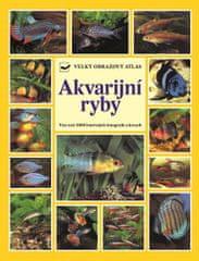 Kahl Wally, Kahl Burkard, Vogt Dieter,: Akvarijní ryby - Velký obrazový atlas