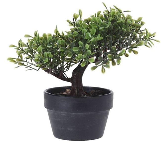 Marex Trade Bonsai v květináči 20 cm, tvar č.3