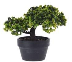 Marex Trade Bonsai v květináči 20 cm, tvar č.4