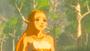 2 - Nintendo The Legend of Zelda: Breath of the Wild / Switch