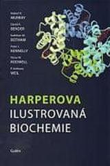 Murray a kolektiv Robert K.: Harperova ilustrovaná biochemie