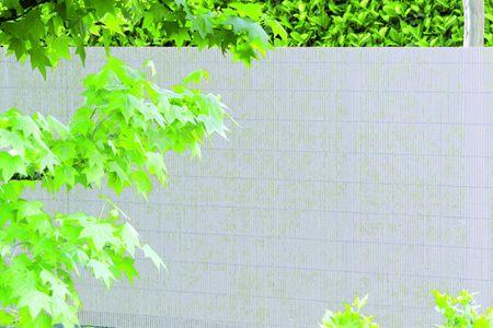 TENAX SPA umělý rákos COLORADO 1,5m x 5m, bílá barva