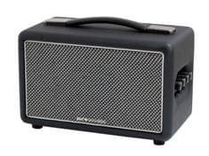 Pure Acoustics Biltmore