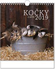 Kalendář nástěnný Ideál Kočky