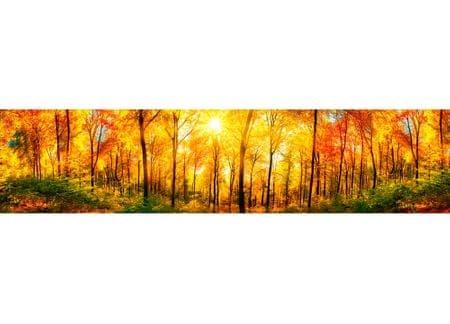 Dimex Fototapeta do kuchyne KI-260-084 Slnečný les 60 x 260 cm