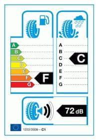 Saetta guma SA Winter 205/55R16 H