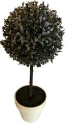 Koopman Zimostráz na kmínku v bílém květináči, 45 cm, modrá