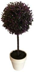 Koopman Zimostráz na kmínku v bílém květináči, 45 cm, šeřík