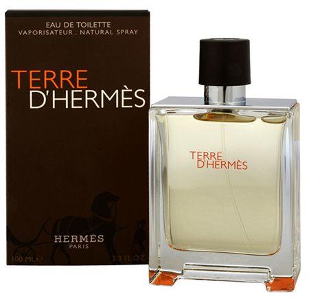 Hermès Terre D´ Hermes - woda toaletowa 100 ml