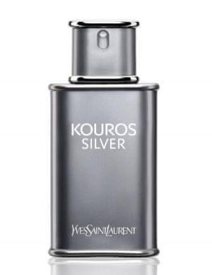 Yves Saint Laurent Kouros Silver - EDT 50 ml pro muže