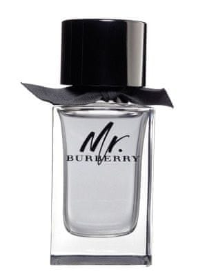 Burberry Mr. Burberry - EDT 50 ml