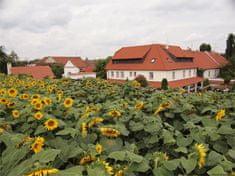 Poukaz Allegria - romantika v Penzionu v Polích