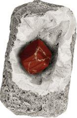 Kosmos minerali in fosili v mavcu