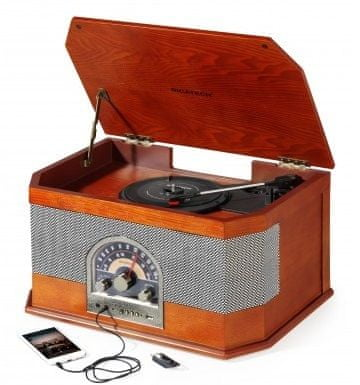 Ricatech RMC82 The Rebel All in 1 Music Center