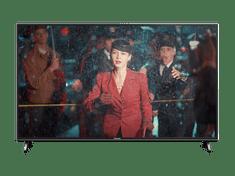 Panasonic 4K UHD TV sprejemnik 49FX600E