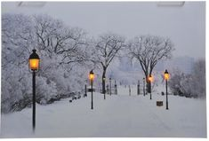 Kaemingk LED világítós kép Hó borított út