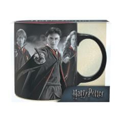 Hrnek Harry Potter - Harry, Ron, Hermiona (0,32 l)