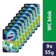 Domestos Power 5 Fenyő WC blokk 9 x 55 g
