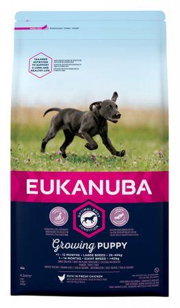 Eukanuba hrana za mladičke velikih pasem, 15 kg