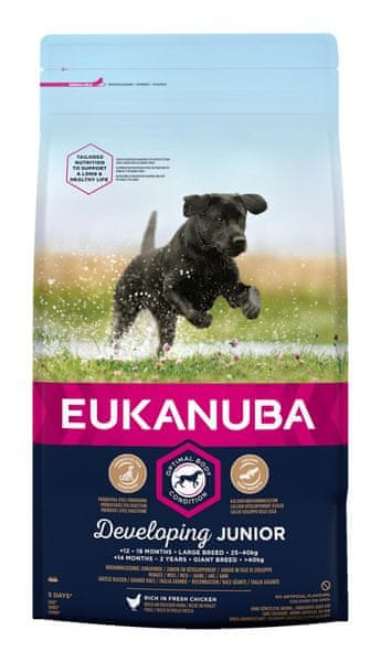 Eukanuba Junior Large 15 kg