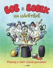 Adam Libor: Bob a Bobek na návštěvě - Poznej s nimi různá povolání