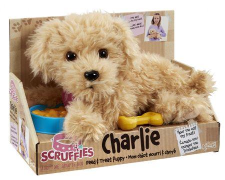 kuža Charlie