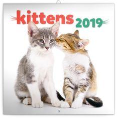Poznámkový kalendář Koťata 2019