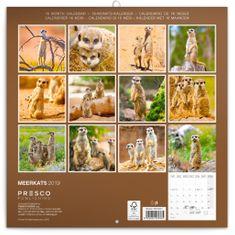 Poznámkový kalendář Surikaty 2019