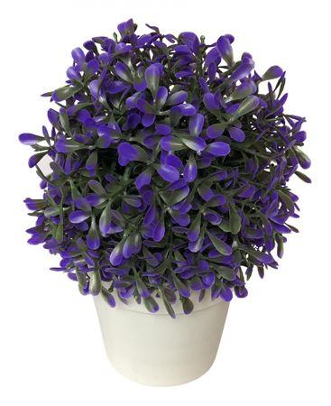 Koopman Dekorativní květina v květináči,20 cm purpura