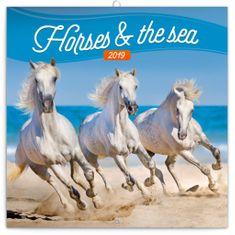 Poznámkový kalendář Koně a moře 2019