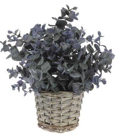 Koopman dekoracyjna roślina z plecioną donicą, dekor 2