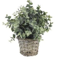Marex Trade dekoracyjna roślina z plecioną donicą, dekor 4