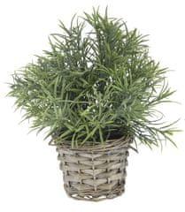 Marex Trade dekoracyjna roślina z plecioną donicą, dekor 5