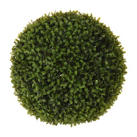 Koopman dekorativna rastlina Buxus, krogla, 22 cm