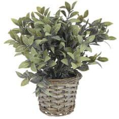 Marex Trade sztuczna roślina dekoracyjna w doniczce z wikliny, dekor 1