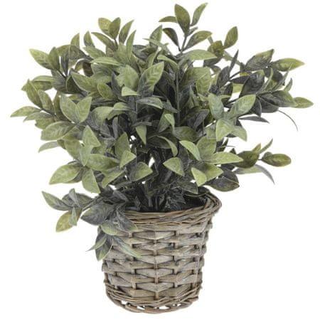 Koopman Dekoratívna rastlina v prútenom kvetináči, dekor 1
