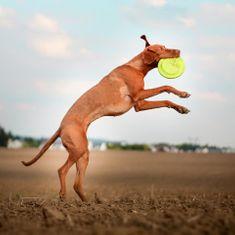 Akinu AQUA penové frisbee veľké pre psy červené