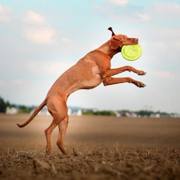 Akinu AQUA pěnové frisbee velké pro psy červené