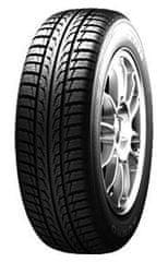 Nexen guma WG-SPORT, 245/45 R19 XL 102V