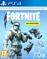 Fortnite - Deep Freeze Bundle (PS4)