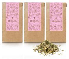 Allnature herbata Echinacea 30 g 3 sztuki
