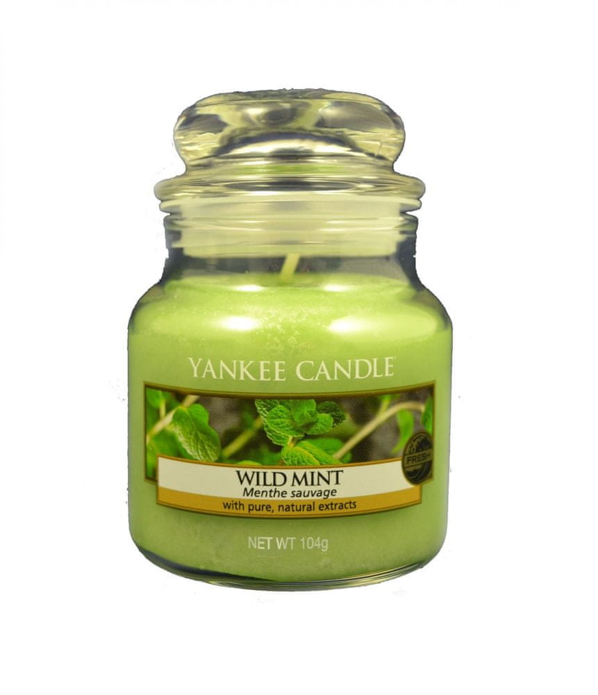 Yankee Candle Classic malý 104 g Divoká máta