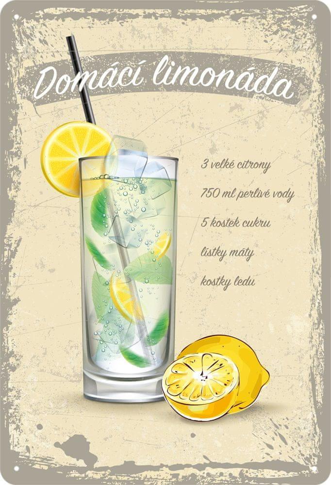 Postershop Plechová cedule: Domácí limonáda - 20x30 cm