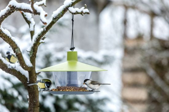Urbalive hranilica za ptice Finch