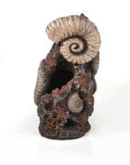Oase Akvarijní dekorace zkamenělé ulity