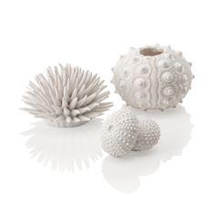 Oase Akvarijní dekorace mořští ježci bílí