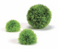 Oase Akváriová dekorácia biOrb Aquatic topiary ball set 3 green