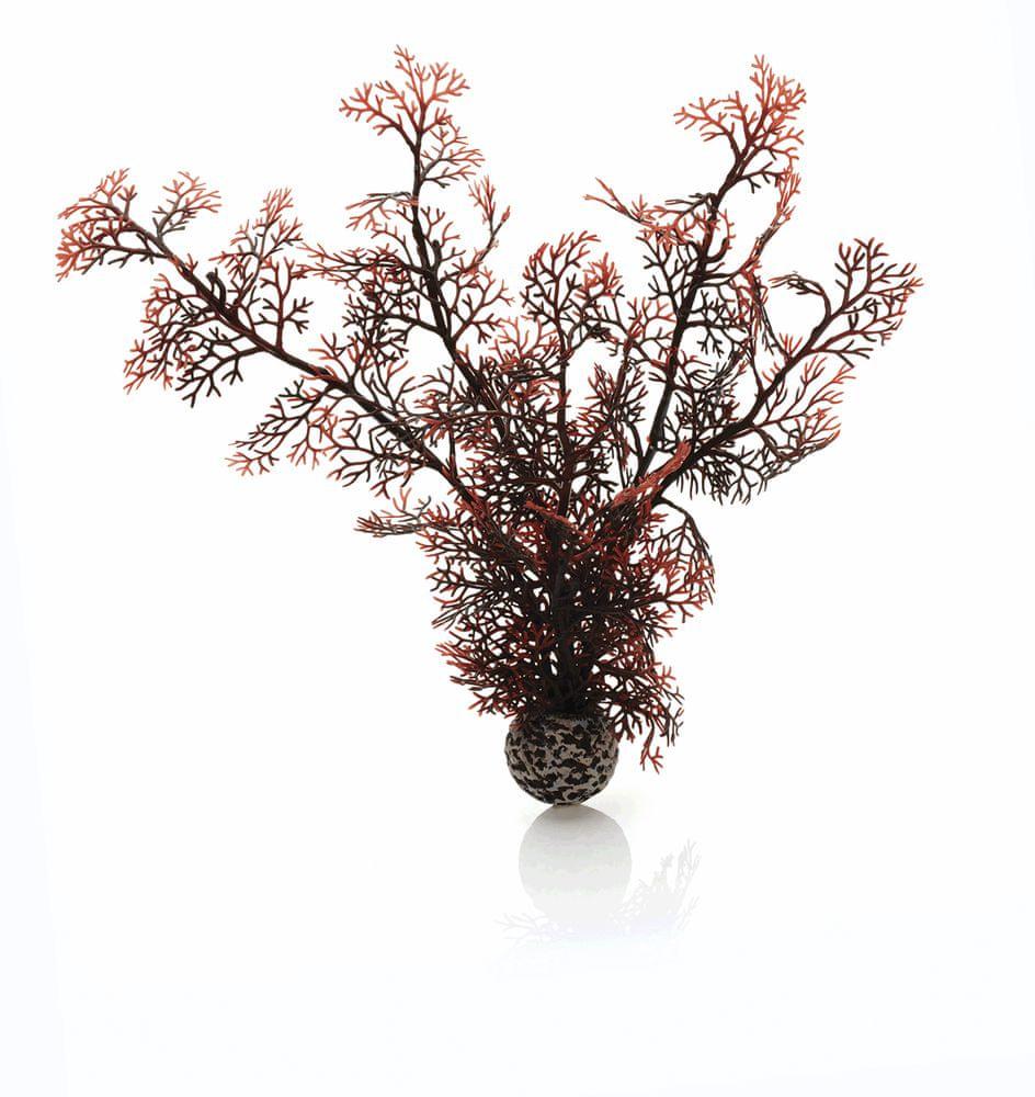 Biorb fialová mořská rostlina 29 cm 46071