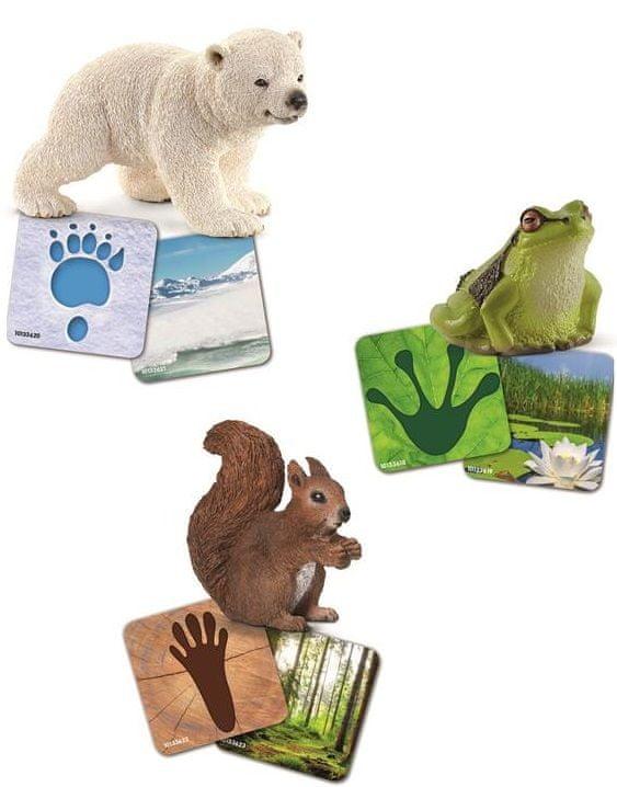 Schleich Vzdělávací kartičky - Wild life Schleich